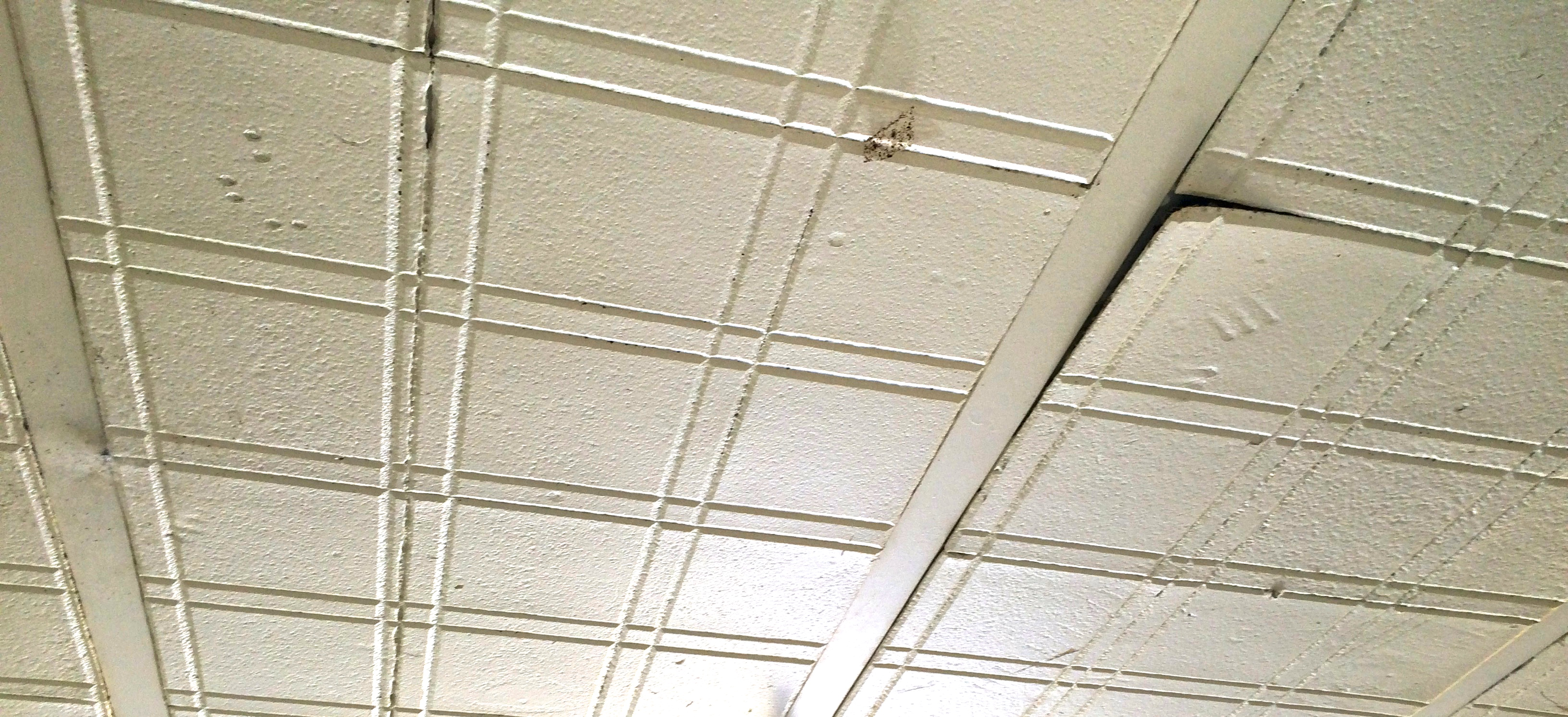 Photo asbestos ceiling removal images 100 asbestos in tile asbestos ceiling tiles how to identify choice image tile dailygadgetfo Images