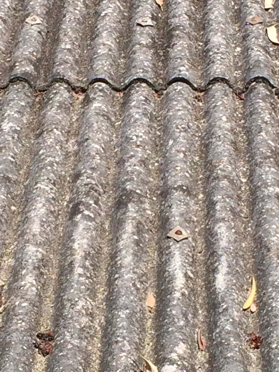 Bernie Banton Asbestos Cement Corrugated Roof Wall And